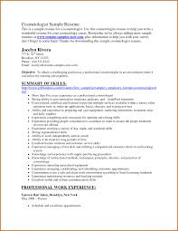 Resume Summary Examples Xamples Of Resume Summary Fungramco 71