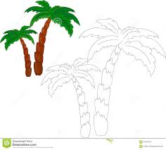 Livre De Coloriage De Palmiers Illustration De Vecteur Image