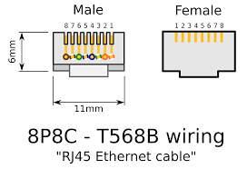 rj45 male wiring diagram trusted wiring diagrams \u2022 RJ45 Female Connector Pinout rj45 female connector wiring diagram with rj 45 plug and jack rh bayareatechnology org cat5 rj45