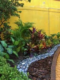 Small Picture 44 best Grahams ideas for a tropical garden images on Pinterest