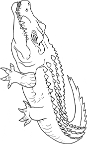 Small Picture Crocodile coloring page Animals Town Animal color sheets
