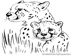 Cheetah Family Coloring Pages Cheetah Outline Printable Luxury
