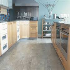 beautiful best flooring for a kitchen with home and foyer bath vinyl trends images cooking area living room pets