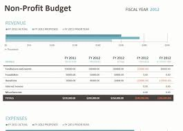 Budget For Non Profit Organization Example