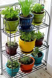 mini indoor container garden for