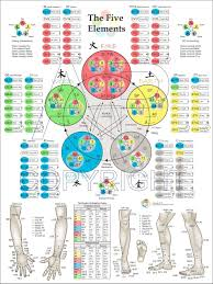 32 Prototypal Tai Chi Pressure Points Chart