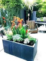 large plant containers pots outdoor planter ideas shocking garden for winter how to move b