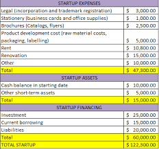 Business Plan Startup Costs Business Start Up Cost Template 5