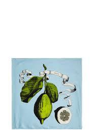 nautilus citrus silk scarf