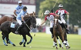 Image result for polo