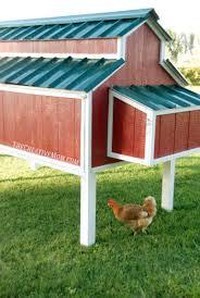 DIY Chicken Coop Building Plans
