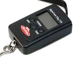 <b>Весы Berkley FishinGear Digital</b> Pocket Scale 190554 купить в ...