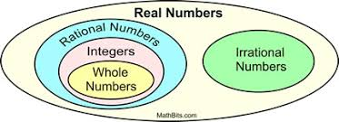 Rational And Irrational Numbers Mathbitsnotebook A1 Ccss