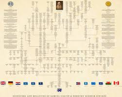 pedigree tree ancestor pedigree chart professional genealogy charts family