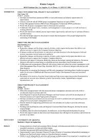 Pmp Resume Sample Director Project Management Resume Samples Velvet Jobs 7