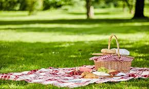 5 Perfect Places to Picnic in Waynesville – Beverly-Hanks Real Estate Blog