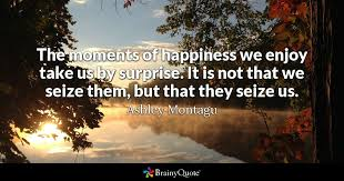 Quotes About Enjoying The Moment Unique The Moments Of Happiness We Enjoy Take Us By Surprise It Is Not