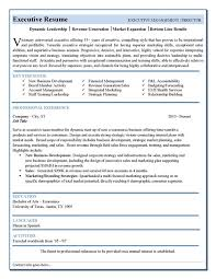 resume mis executive best executive resume format best ceo resume for executive resume templates best executive resume format