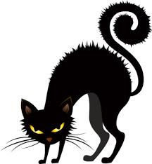 black cat clipart png. Perfect Cat Scared Black Cat Clipart With Black Cat Clipart Png R
