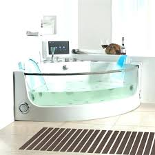 corner whirlpool tub bathtubs idea 2 person bathtub white and glass two jetted home depot w two person whirlpool tub