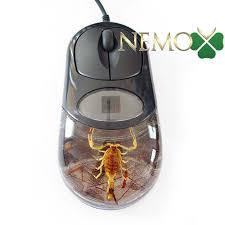 Талисман УДАЧИ привлечь удачу и деньги Быстрая покупка Коллекция   коллекция насекомых компьютерная мышь скорпион насекомые в акриле насекомые в акриловой смоле