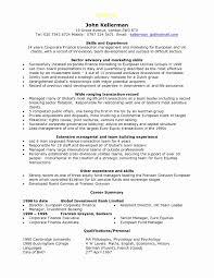 Automotive Service Manager Resume Awesome Finance Executive Resume