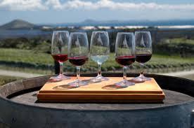 Resultado de imagem para vinho vinícola