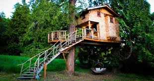 Behind The Build Christmas Treehouse  Treehouse Masters  YouTubeTreehouse Masters Free Episodes