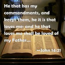 Image result for john 14 20