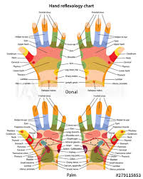 Hand Reflexology Chart With Description Of The Corresponding