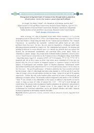 essay on risk management models pdf