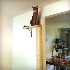 wall mounted cat furniture tree best trees diy climbing pole scratching po