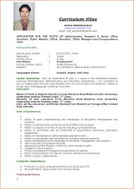 Cv Formats Samples Doc 11 Handtohand Investment Ltd