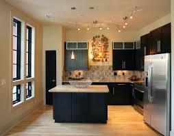 track kitchen lighting. Stainless Steel Kitchen Track Lighting Options .