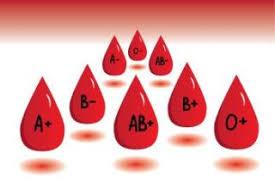 Imagini pentru grupa de sange