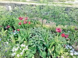 Victorian Kitchen Gardens Media Tweets By Josepha Richard Gardensofchina Twitter