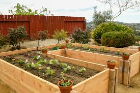 12 coolest raised bed kits available on