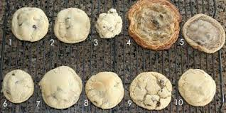 Cookie Chart What Went Wrong With These Cookies A Chart To Tell You How