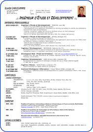 Curriculum Vitae Formats Mesmerizing International Curriculum Vitae Resume Format For Overseas Jobs 28