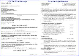 Scholarship Resume Template Luxury 20 Best Free Resume Templates
