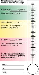 Asthma Zone Chart Asthma