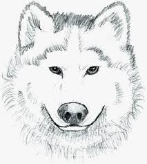 realistic puppy coloring pages. Exellent Realistic Animal Jam Arctic Wolf Coloring Pages To Print Nice Realistic Pup  Of 20 Intended Puppy P