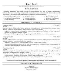 Insurance Agent Resume Insurance Agent Resume Examples Therpgmovie 2