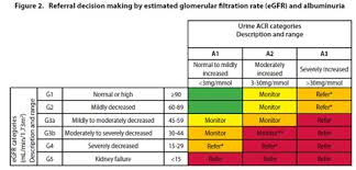 Ckd Classification Chart Chronic Kidney Disease Identification Evaluation And