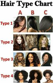 Hair Type Chart In 2019 Natural Hair Types Hair Type