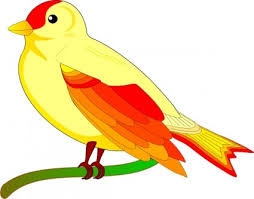colorful birds flying clipart. Interesting Flying Colorful Birds Flying Clipart  Gallery To