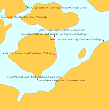 Sandy Point Anderson Island Puget Sound Washington Tide Chart