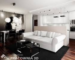 Living Room For Apartments Modern Skylight Ideas Marmer Flooring Bookcase Chair House Plant