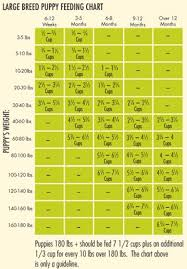 Puppy Eating Chart Avoderm Natural Chicken Meal And Brown Rice Formula Large Breed Puppy Food