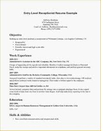 Example Of Entry Level Resume Stunning Entry Level Accounting Resume Objective Examples Intended For Sample